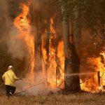 رجال الإطفاء في أستراليا يضاعفون جهودهم للسيطرة على الحرائق قبل موجة حر جديدة