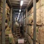 تحذيرات فلسطينية من خطورة الحفر أسفل الأقصى