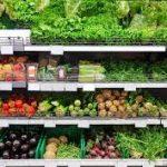 أطعمة تقلل من خطر الإصابة بألزهايمر.. تعرف عليها