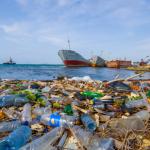 «خذ ثلاثة لأجل البحر».. مبادرة أسترالية لحماية الكائنات البحرية