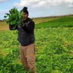 مزرعة «التأثير» في أمريكا.. مركز اجتماعي للابتكار للقضاء على هدر الموارد