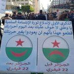 الجزائريون صامدون في سنوية ميلاد الحراك