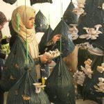 فتيات من غزة ينتجن الفطر لاستخدامه في الغداء والتجميل