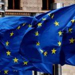 اتهامات للاتحاد الأوروبي بالتقاعس عن حماية النحل والفراشات