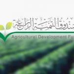 السعودية تخصص ملياري ريال لتمويل استيراد منتجات زراعية
