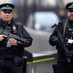 الشرطة البريطانية تضبط كمية كبيرة من الكوكايين مخبأة في شحنة فاكهة