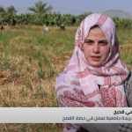 غزة.. الفقر والحصار يدفعان النساء للعمل في مهن شاقة لإعالة أسرهن