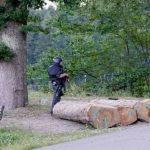 سقوط «رامبو الغابة السوداء» في قبضة الشرطة الألمانية