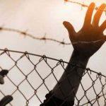 عبدالناصر فروانة: الأسرى الفلسطينيون وعائلاتهم يعانون جراء توقف برنامج الزيارات