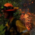 حرائق الغابات تدمر مئات المنازل بكاليفورنيا الأمريكية