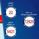 الصحة المصرية تسجل 212 إصابة جديدة بكورونا