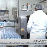 تونس.. أزمات جديدة تواجه قطاع الألبان