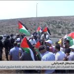 الاحتلال يقمع وقفة احتجاجية ضد إقامة مشروع استيطاني في طولكرم