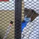 البشير يصل مقر محاكمته بتهمة انقلاب 1989