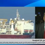 باحث: تحويل منتدى غاز شرق المتوسط إلى «منظمة» ضربة إلى تركيا