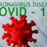 هذا هو تأثير الرطوبة على انتشار فيروس كورونا