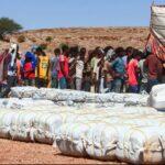 رئيس وزراء إثيوبيا يرفض الوساطة الأفريقية لحل أزمة تيجراي