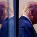 ترامب يخسر الطعون القانونية على نتائج الانتخابات في 7 ولايات