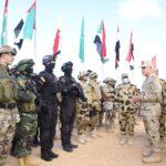 خبير عسكري: مصر أصبحت القوة الضاربة لمعسكر الاعتدال العربي