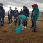 رئيس الوزراء الجزائري يطلق حملة تشجير بعد حرائق الغابات