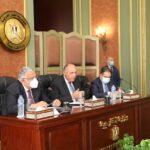 وزير الخارجية المصري يؤكد على اهتمام بلاده بحماية وتعزيز حقوق الإنسان