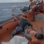 إنقاذ أكثر من 400 مهاجر جديد في البحر المتوسط