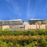 جامعة الإمارات الثالثة عربياً وفق تصنيف التايمز 2021