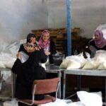 وسط الجائحة.. 70% من سكان غزة يفتقدون الأمن الغذائي