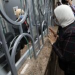 تسجيل 4 ملايين مصري بمنظومة التأمين الصحي الجديدة
