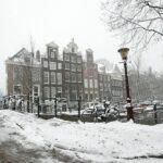 الحكومة الهولندية تناشد المواطنين البقاء في المنازل لهذا السبب