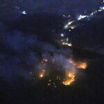 لليوم الخامس.. حريق الغابات يتواصل فى اليابان
