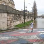 فيضان نهر السين عرقل حركة المرور بفرنسا