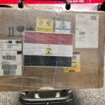 مصر تقدم شحنة جديدة من أدوية علاج كورونا إلى لبنان