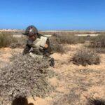 صور  ليبيا.. إزالة الألغام من ضواحي سرت والجفرة