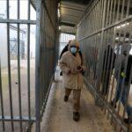 تطعيم العمال الفلسطينيين بلقاح كورونا داخل إسرائيل
