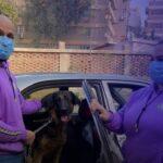 زوجان مصريان يدشنان مشروع تاكسي للحيوانات الأليفة
