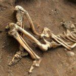 بقايا بشرية تكشف عن هجرة قديمة إلى أوروبا قبل 45 ألف سنة