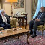 شكرى: مصر تدعم كافة الجهود الرامية للتوصل لحل سياسى شامل للأزمة اليمنية