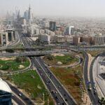 أسد يفترس صاحبه في الرياض