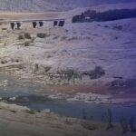 تأثر كبير بالأراضي الزراعية العراقية جراء السدود التركية والإيرانية