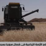 من قوة زراعية إلى بلد يعاني نقص الغذاء.. سوريا أمام شبح الجفاف