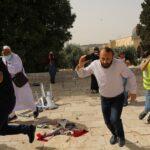 وزير القدس: دمنا غير رخيص وجريمة الاحتلال في الأقصى عدوان همجي