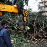 19 قتيلا في إعصار بالهند وأمطار غزيرة تغرق أنحاء من ولاية جوجارات