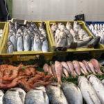 إقبال على شراء الأسماك في المغرب رغم ارتفاع أسعارها خلال رمضان