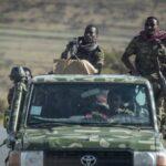 الإمارات ترحب بوقف إطلاق النار في إقليم تيجراي في إثيوبيا