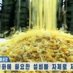 قيود كورونا والعقوبات تدفع كوريا الشمالية نحو إعادة التدوير