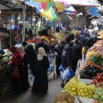 غزة.. دعوات بضرورة الإسراع بتأهيل القطاع الزراعي