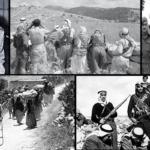 في ذكرى ثورة زعيم استثنائي.. فلسطين «بوابة» إعلان الجمهورية الأولى في مصر