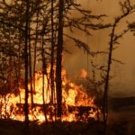 لبنان يواصل الجهود لإخماد حرائق الغابات