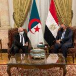وزير الخارجية المصري يلتقي نظيره الجزائري بالقاهرة